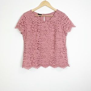 Talbots Pink Floral Lace Blouse Size 16P